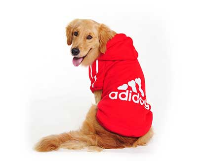 product dog clothes