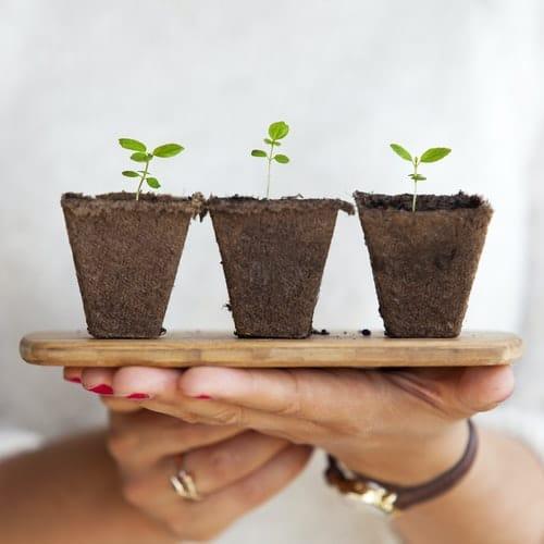 3 formas de hacer crecer tu blog